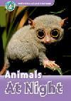 Animals At Night (Read and Discover 4) Activity Book